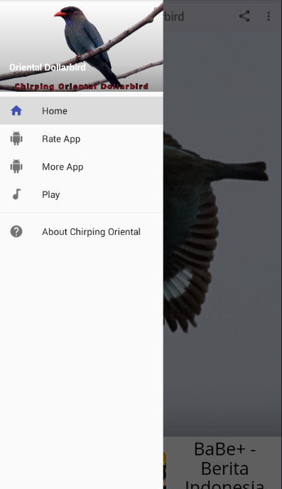 Chirping Oriental Dollarbird 1 0 APK Download - Android