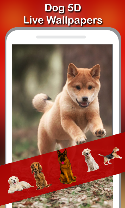5D Cute Puppies Live Wallpaper 1.0 APK
