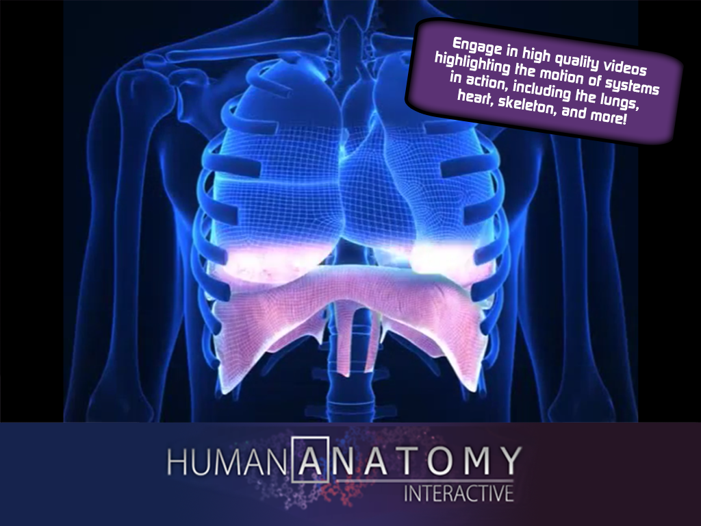 Human Anatomy App For Android 5989752 Es Youlandfo