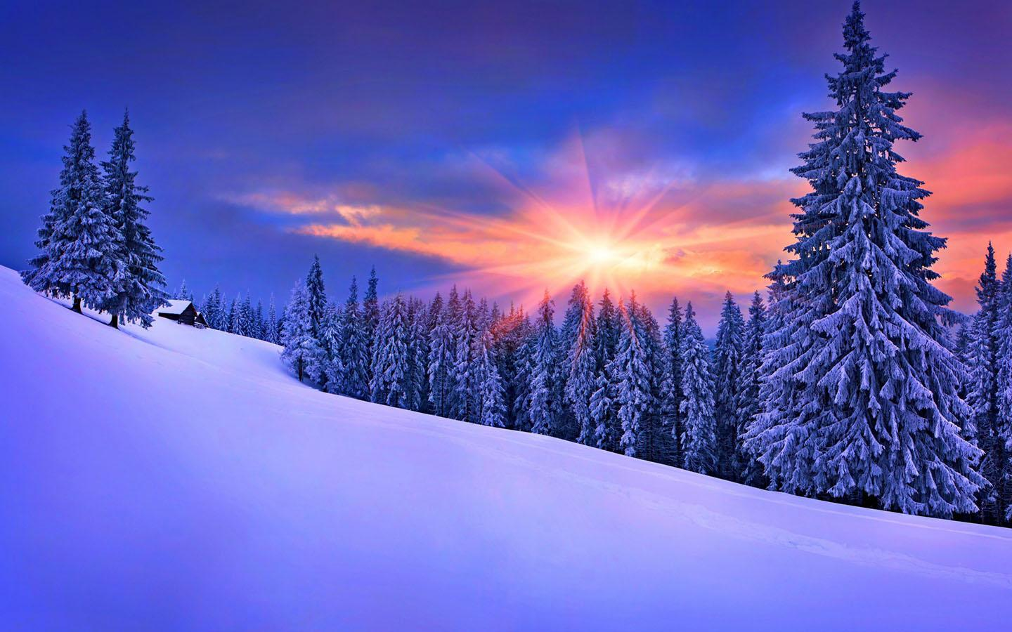 Snow wallpaper apk download android Beautiful snowfall pictures