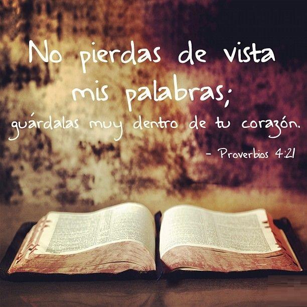 Versiculos De La Biblia De Animo: Imagenes Y Versos De La Biblia 5.3 APK Download