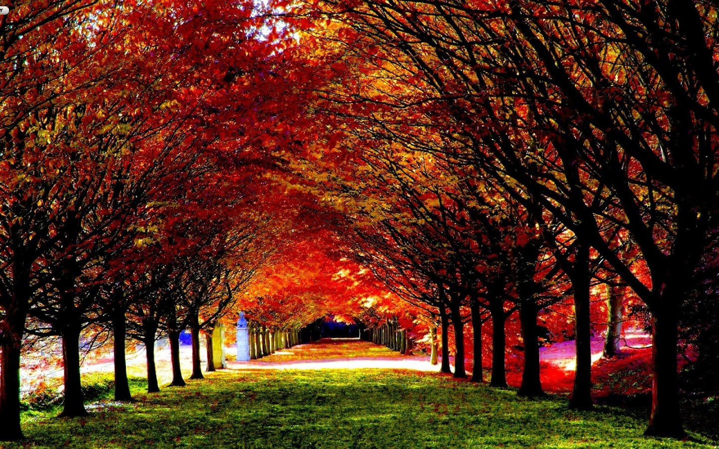 Autumn Wallpaper 10 APK Download Android Personalization Apps