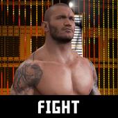 Super Wrestling WWE Action Updates 6.0