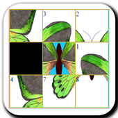 Fly Slide Puzzle 1.2.3