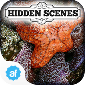 Hidden Scenes Secret Tidepool 1.0.14