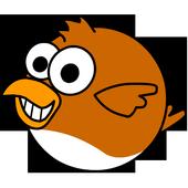 Cuckoos FREE