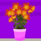 PinkColorFloorEscape 1.0