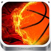 Dünya Basketbol Oyunu