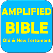 AMPLIFIED BIBLE 116