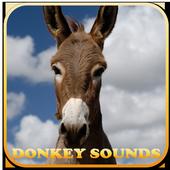 Donkey Sounds funny 1.0
