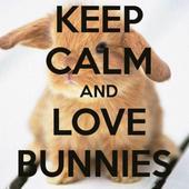 Keep Calm And Bunny ON █▬█.█.▀█▀