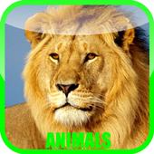 Animal Sounds Zoo 1.0.3