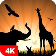 Animal Wallpapers 4K 5.2.3
