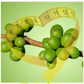 Green Bean Coffee Diet 1.0