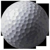 Mini Golf 2012 1.2