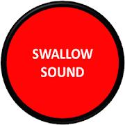 Swallow Sound 1.2