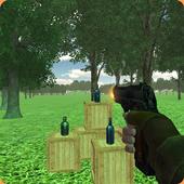 Bottle Shoot 3D 1.2