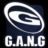 G.A.N.G PHOENIX