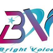 Bright Tel 6.5