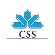 TÉLÉCHARGER VIRAGE CSS