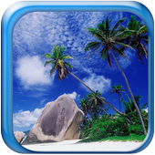 Beach Natural Scenery Gallery 1.1