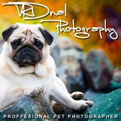 VRDnal Photography 1