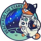 Space Cat Run 1.0