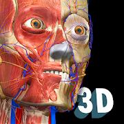 3D Anatomy for the Artist 1 2 7 1 APK + OBB (Data File