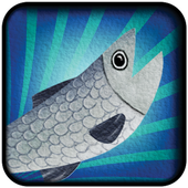 Super Salmon Migration Demo 1