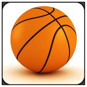 Basketball Mayhem 1.0