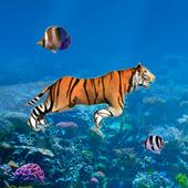 Tiger Diving 1.2