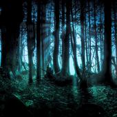 Dark Forest Live Wallpaper 1.00