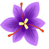 Flower Slash 1.1