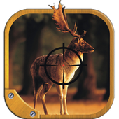 Deer Hunt Rapid Shooting 1.1