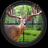 Deer Hunter Big Shot 1.0