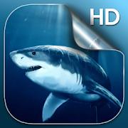 Shark Live Wallpaper 4.2