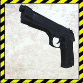 Rifle Range Simulator 1.0