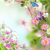Flowers Live Wallpaper 5.0