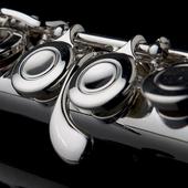 Easy Flute - Flute Tuner 2.1