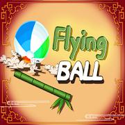 Flying BallEBRAHIM ALIAdventure