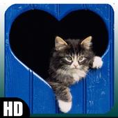 Cat Wallpaper 1.4