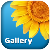 Gallery-3D Photo Viewer,picture album