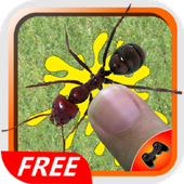 Ant Smasher Best Free Game 1.8
