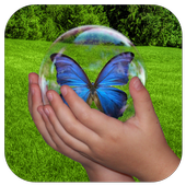 Bubble Nature Kids Game Free 2.0