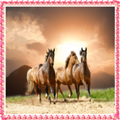 New Horse Onet Connect Games 1.0