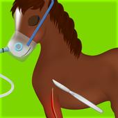 Horse Surgery Games 1.0