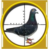 Pigeon (Kabootar) Shooting, 3D 1.0