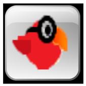 POOR BIRD 2.0.0