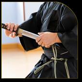 Katana Sword Fighting 1.0