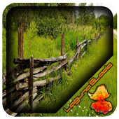 Rustic Cedar Fence Design 1.1